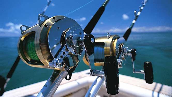 Fishing boats fishing trips private charters night fishing for Bottom fishing reels